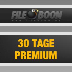 Fileboom 30 Tage Premium