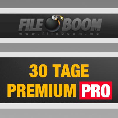 30 Tage Fileboom Premium PRO